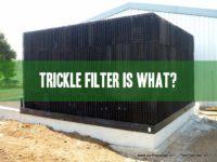 trickle filter for aquaculture and aquaponics