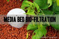 media bed bio filtration aquaponics