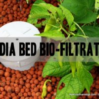 media bed bio filtration aquaponics