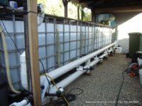 backyard aquaculture