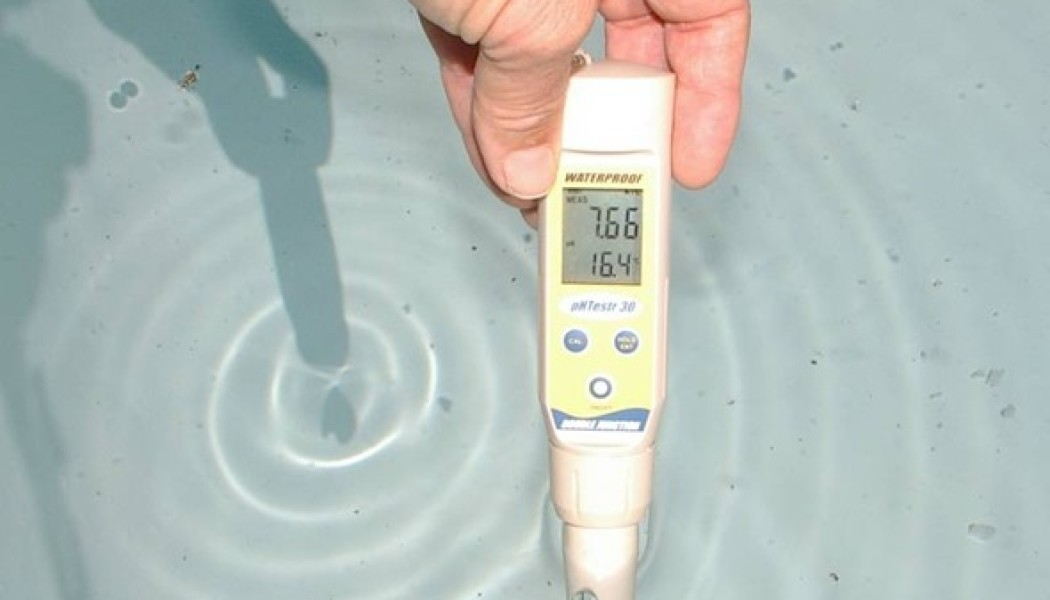 Buffering pH and Alkalinity in Aquaponic Systems