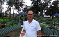Basin View Aquaponic Garden – Organic Garden Growth