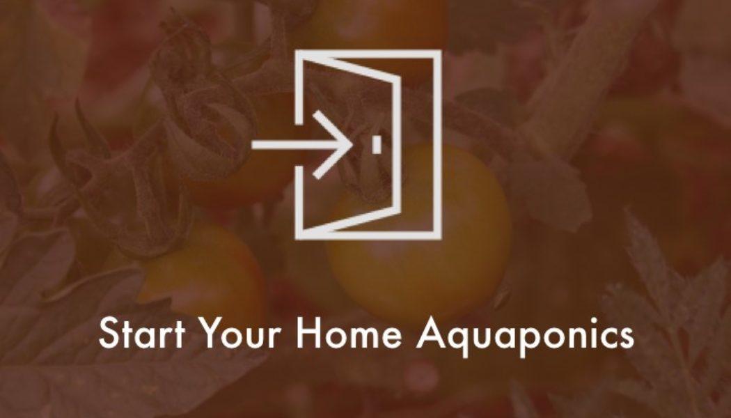 start-home-aquaponics system