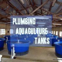 plumbing aquaculture tanks