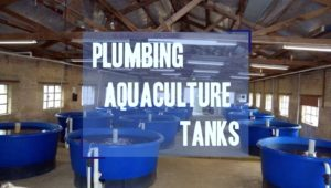 plumbing aquaculture tanks