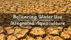 water use in aquaponics