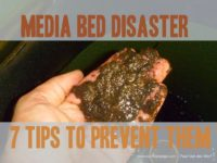 aquaponic media beds