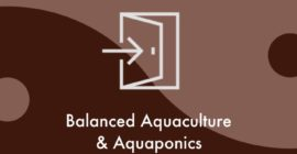Balanced Aquaculture or Aquaponic System