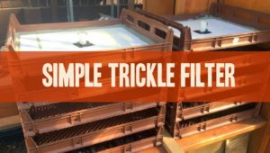 simple trickle filter for aquaculture and aquaponics