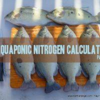 aquaponics nitrogen calculator