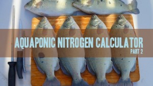 aquaponics nitrogen calculator