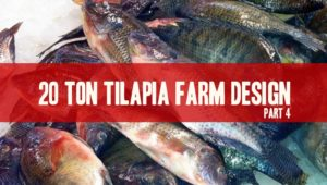 20 ton tilapia fish farm design