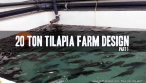 20 Ton Tilapia Farm - Part 1