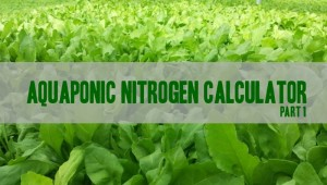 Aquaponic Nitrogen Calculator – What is it?