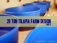 fish farm design do it yourself