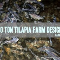 stocking calculations for tilapia farm design
