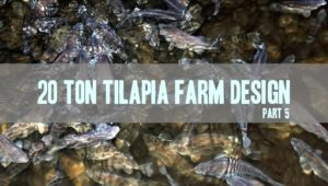stocking calculations for tilapia farm design