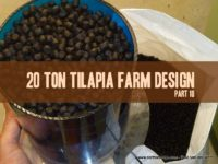 tilapia fish farm design feed loading aquaculture aquaponics