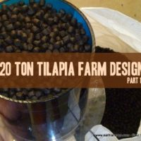 tilapia fish farm design feed loading aquaculture aquaponics