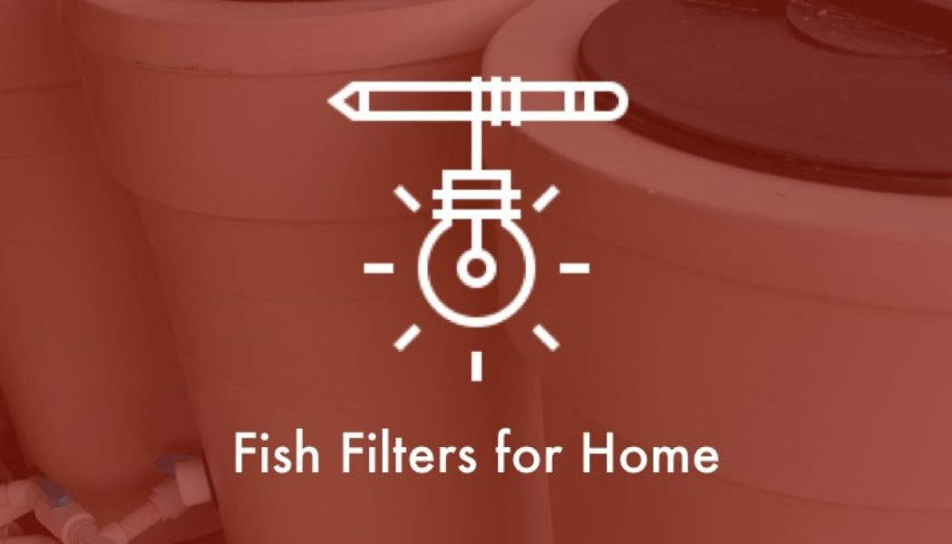 fish-filters-home.001